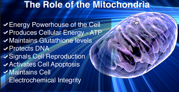ketogenic_diet_benefits_mitochondria_energy_heads_up_health