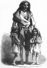413px-Irish_potato_famine_Bridget_O27Donnel