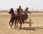 chariot-150x150