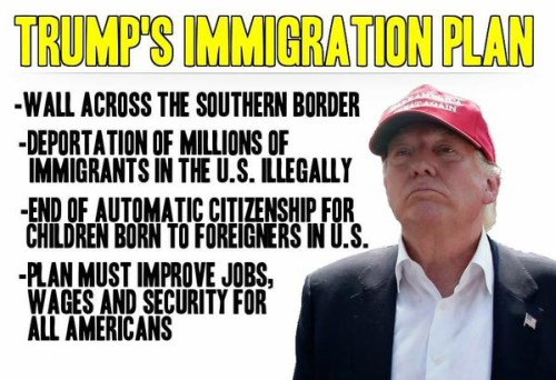 donald-trump-immigration-e1439809348548